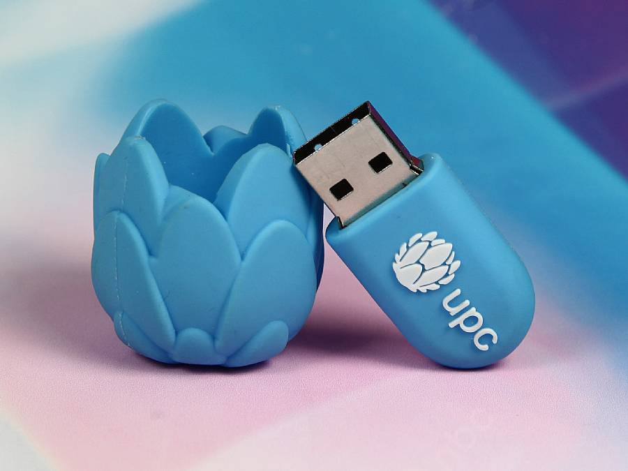usb stick lotus bluete blume wellness logo