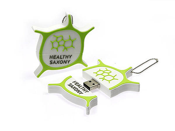 Healthy Saxony Logo USB-Stick