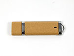 PLA Kunststoff Werbeartikel USB-Sticks