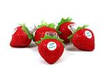 Sunvit USB-Stick in der form einer Erdbeere
